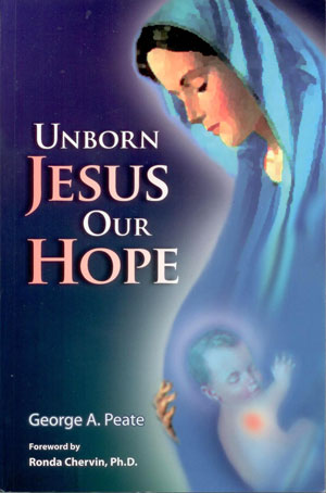 The hidden first nine months of Jesus's life, from the moment of conception within Mary's body to his birth in Bethlehem. The author thoughtfully explores the glories, mysteries, and graces found in Jesus's as he grows from fertilized ovum to newborn baby